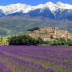 Люди, прославившие Прованс – Альпы – Лазурный Берег